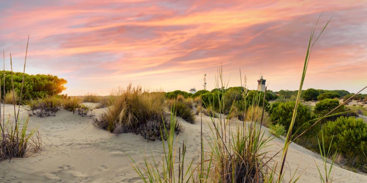 Dunes de l'Espiguette Crédit C.Labrande